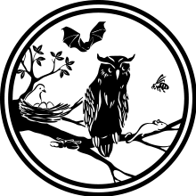 baumfällung seilklettertechnik, baumkletterer in der Nähe, baumschutzsatzung wuppertal solingen remscheid, antrag baumfällung stadt wuppertal solingen remscheid